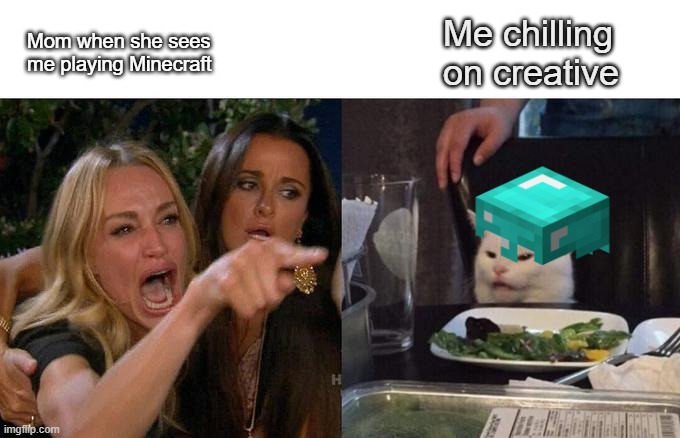 Woman Screaming at Cat |  Me chilling on creative; Mom when she sees me playing Minecraft | image tagged in memes,woman yelling at cat,minecraft | made w/ Imgflip meme maker