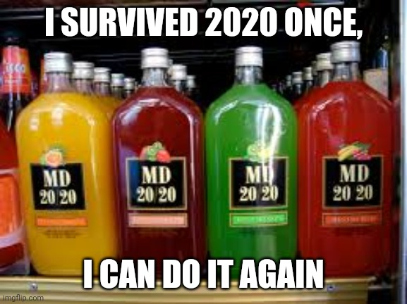 I SURVIVED 2020 ONCE, I CAN DO IT AGAIN | image tagged in covid-19 | made w/ Imgflip meme maker