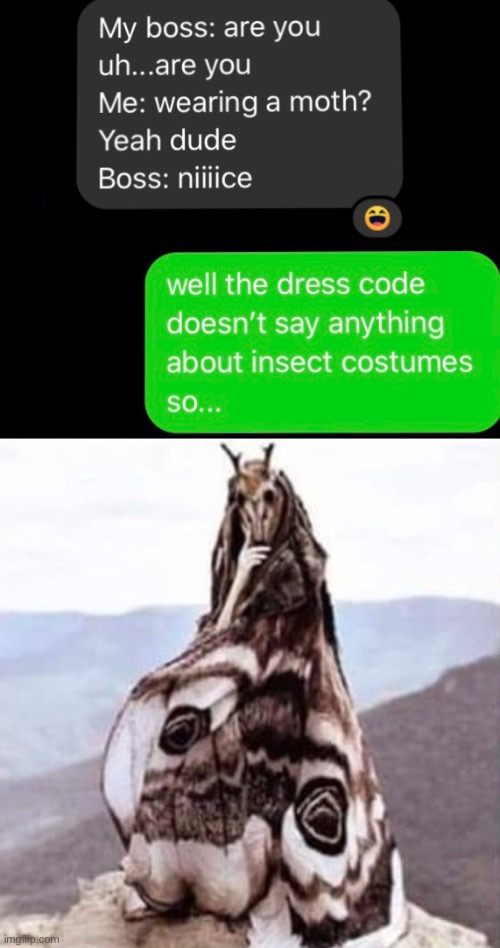 Mothman | image tagged in mothman,moth,workplace dresscode,dresscode,cloak | made w/ Imgflip meme maker