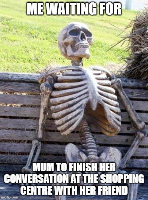 Waiting Skeleton |  ME WAITING FOR; MUM TO FINISH HER CONVERSATION AT THE SHOPPING CENTRE WITH HER FRIEND | image tagged in memes,waiting skeleton | made w/ Imgflip meme maker