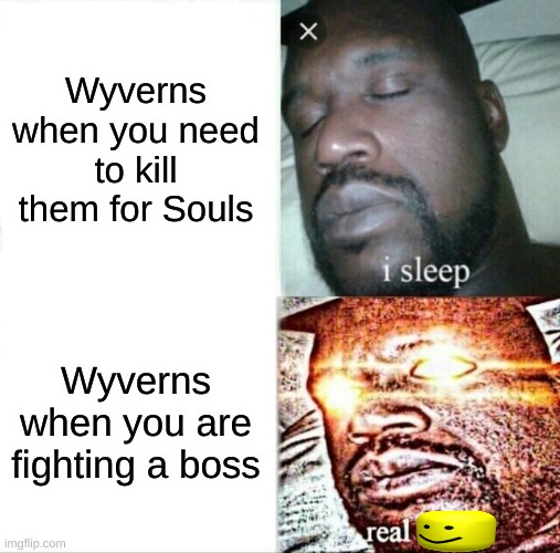 Terraria Hardmode in a Nutshell |  Wyverns when you need to kill them for Souls; Wyverns when you are fighting a boss | image tagged in memes,sleeping shaq,terraria | made w/ Imgflip meme maker