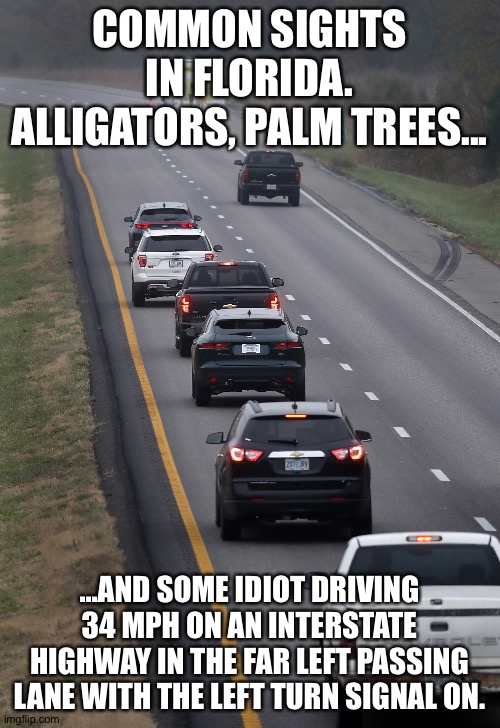 Left lane hog |  COMMON SIGHTS IN FLORIDA. ALLIGATORS, PALM TREES... ...AND SOME IDIOT DRIVING 34 MPH ON AN INTERSTATE HIGHWAY IN THE FAR LEFT PASSING LANE WITH THE LEFT TURN SIGNAL ON. | image tagged in driving,bad drivers,florida | made w/ Imgflip meme maker