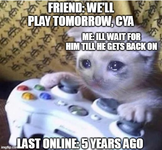 based on a true story btw |  FRIEND: WE'LL PLAY TOMORROW, CYA; ME: ILL WAIT FOR HIM TILL HE GETS BACK ON; LAST ONLINE: 5 YEARS AGO | image tagged in sad gaming cat,memes | made w/ Imgflip meme maker