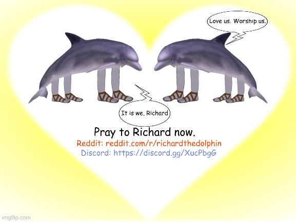 Richard promotional material I made | image tagged in richard the dolphin,promotion,reddit,discord,fun | made w/ Imgflip meme maker