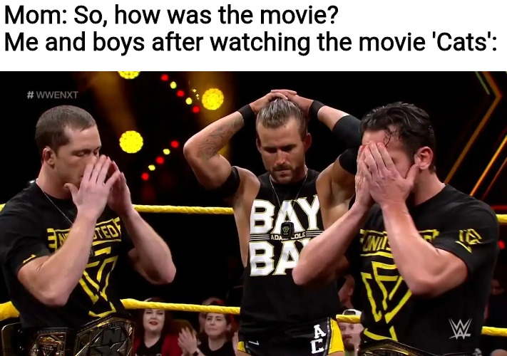 Undisputed era disappointed |  Mom: So, how was the movie? Me and boys after watching the movie 'Cats': | image tagged in undisputed era disappointed,cats,movies,memes,mom | made w/ Imgflip meme maker
