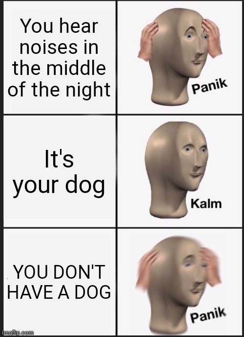 Dog |  You hear noises in the middle of the night; It's your dog; YOU DON'T HAVE A DOG | image tagged in memes,panik kalm panik | made w/ Imgflip meme maker