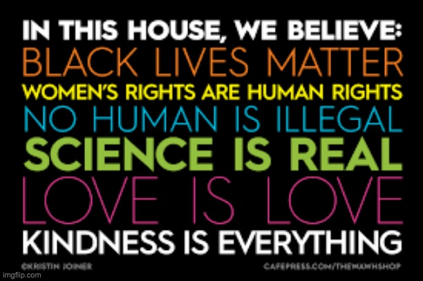 Kindness is everything | image tagged in kindness,black lives matter,women rights,science,love | made w/ Imgflip meme maker