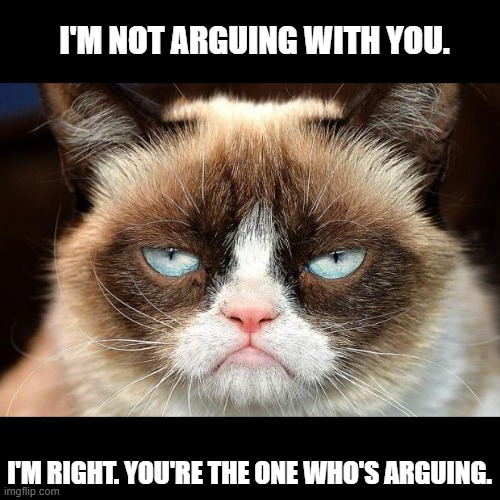 Grumpy Cat Not Amused |  I'M NOT ARGUING WITH YOU. I'M RIGHT. YOU'RE THE ONE WHO'S ARGUING. | image tagged in memes,grumpy cat not amused,grumpy cat,arguing,your argument is invalid | made w/ Imgflip meme maker