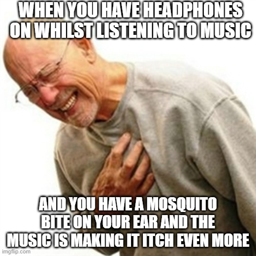 Right In The Childhood |  WHEN YOU HAVE HEADPHONES ON WHILST LISTENING TO MUSIC; AND YOU HAVE A MOSQUITO BITE ON YOUR EAR AND THE MUSIC IS MAKING IT ITCH EVEN MORE | image tagged in memes,right in the childhood | made w/ Imgflip meme maker