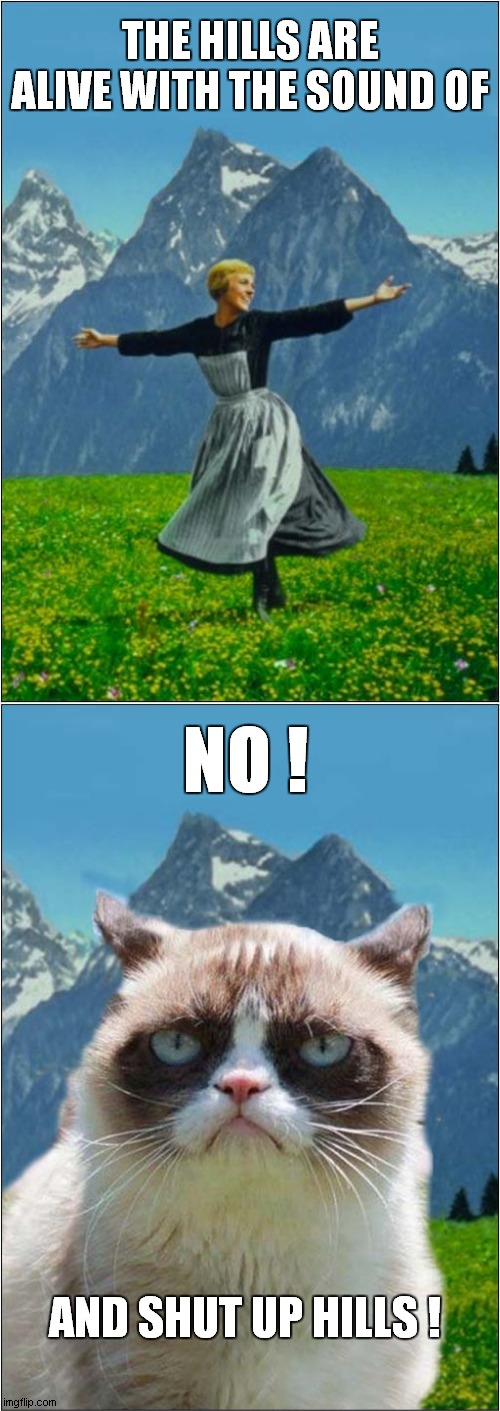 Grumpy Hates The Sound of Music |  THE HILLS ARE ALIVE WITH THE SOUND OF; NO ! AND SHUT UP HILLS ! | image tagged in fun,grumpy cat,the sound of music | made w/ Imgflip meme maker