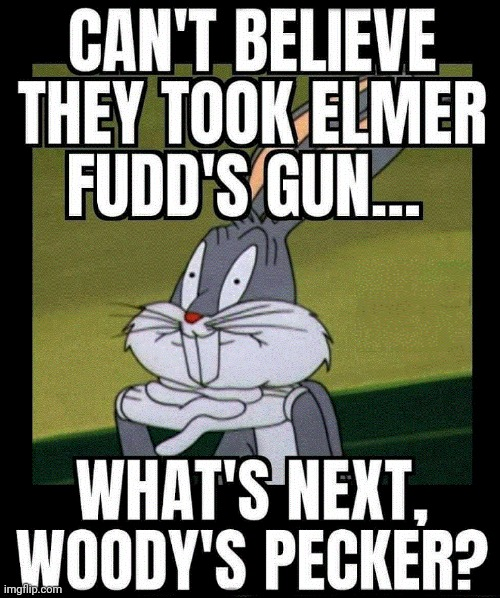 They Took Elmer Fudd's Gun | image tagged in bugs bunny,elmer fudd,liberal logic | made w/ Imgflip meme maker
