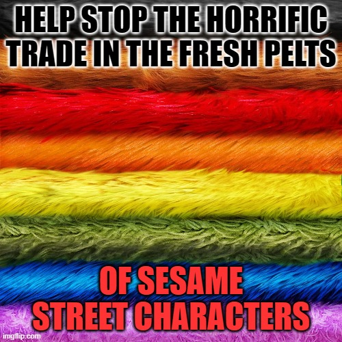 sesame street pelts |  HELP STOP THE HORRIFIC TRADE IN THE FRESH PELTS; OF SESAME STREET CHARACTERS | image tagged in sesame street,pelts,fur trade | made w/ Imgflip meme maker