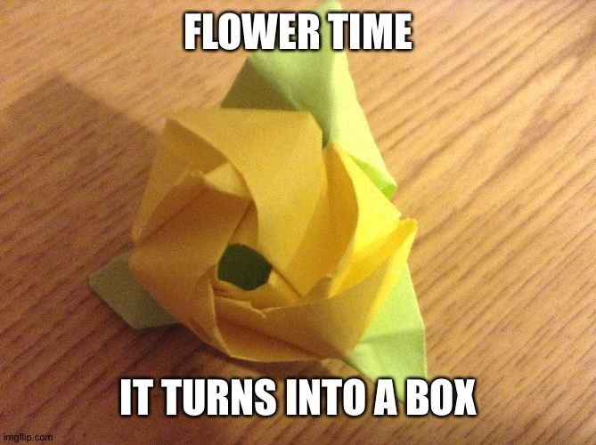 Flowers!!!! |  FLOWER TIME; IT TURNS INTO A BOX | image tagged in origami | made w/ Imgflip meme maker