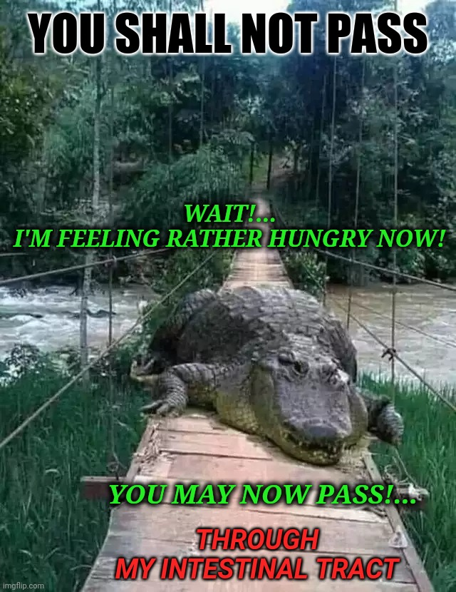 YOU SHALL NOT PASS; WAIT!... I'M FEELING RATHER HUNGRY NOW! YOU MAY NOW PASS!... THROUGH MY INTESTINAL TRACT | image tagged in you shall not pass,alligator,rope bridge,hungry,intestinal tract,pass | made w/ Imgflip meme maker