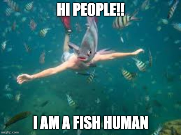 Fish man |  HI PEOPLE!! I AM A FISH HUMAN | image tagged in idk what a tag is | made w/ Imgflip meme maker