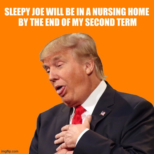 Orange Pun | SLEEPY JOE WILL BE IN A NURSING HOME  BY THE END OF MY SECOND TERM | image tagged in orange pun | made w/ Imgflip meme maker