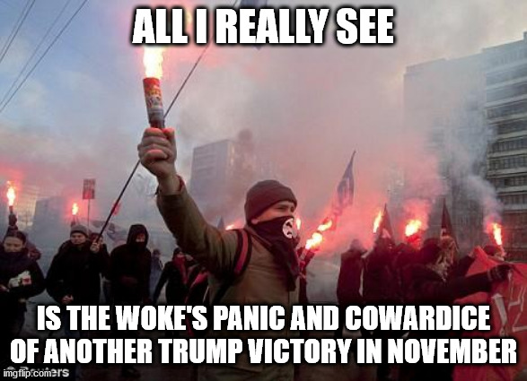 Woke Protest |  ALL I REALLY SEE; IS THE WOKE'S PANIC AND COWARDICE OF ANOTHER TRUMP VICTORY IN NOVEMBER | image tagged in protest,democrats,woke,protesters,trump | made w/ Imgflip meme maker