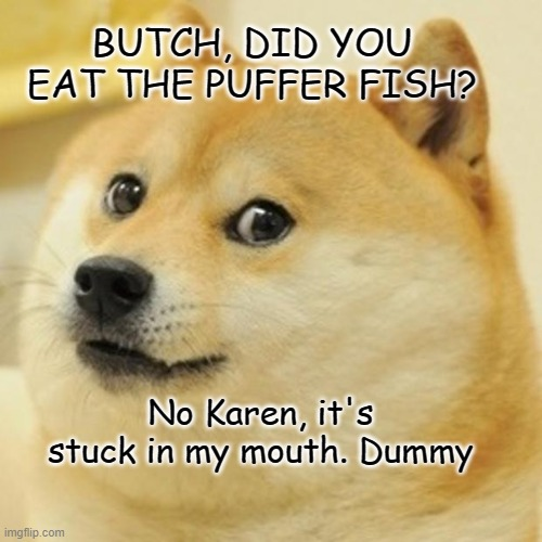 Doge Meme |  BUTCH, DID YOU EAT THE PUFFER FISH? No Karen, it's stuck in my mouth. Dummy | image tagged in memes,doge | made w/ Imgflip meme maker