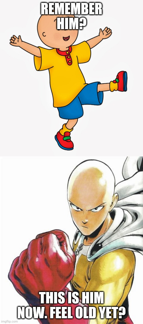 REMEMBER HIM? THIS IS HIM NOW. FEEL OLD YET? | image tagged in caillou,anime meme | made w/ Imgflip meme maker