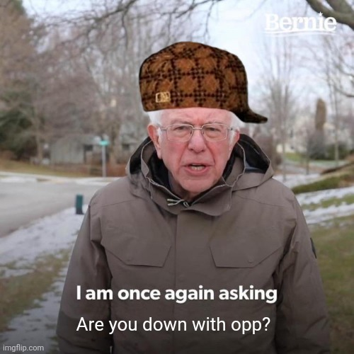 Bernie I Am Once Again Asking For Your Support Meme |  Are you down with opp? | image tagged in memes,bernie i am once again asking for your support | made w/ Imgflip meme maker