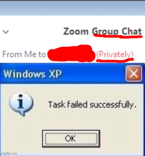 It's not a group chat if it's private zoom! | image tagged in task failed successfully | made w/ Imgflip meme maker