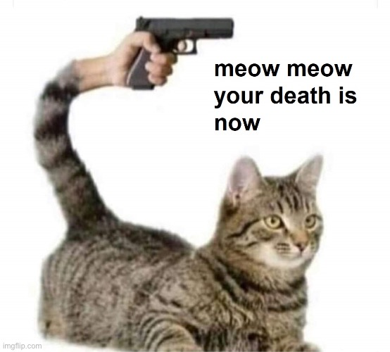 meow meow your death is now | image tagged in meow meow your death is now | made w/ Imgflip meme maker