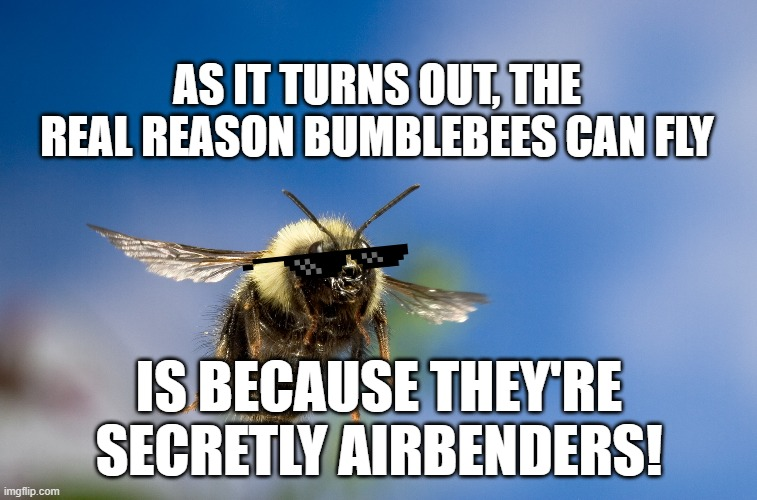 Bumblebee Airbender |  AS IT TURNS OUT, THE REAL REASON BUMBLEBEES CAN FLY; IS BECAUSE THEY'RE SECRETLY AIRBENDERS! | image tagged in bumblebee in flight | made w/ Imgflip meme maker