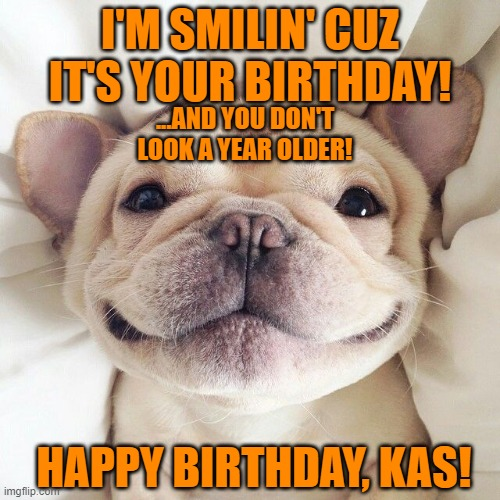 French Bulldog |  I'M SMILIN' CUZ IT'S YOUR BIRTHDAY! ...AND YOU DON'T LOOK A YEAR OLDER! HAPPY BIRTHDAY, KAS! | image tagged in french bulldog | made w/ Imgflip meme maker
