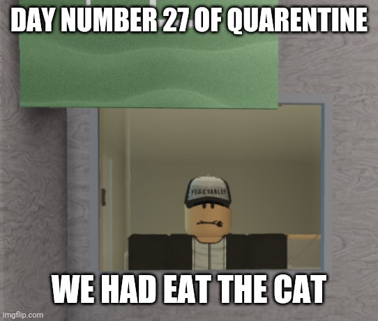 Lol new format |  DAY NUMBER 27 OF QUARENTINE; WE HAD EAT THE CAT | image tagged in roblox guy in house | made w/ Imgflip meme maker
