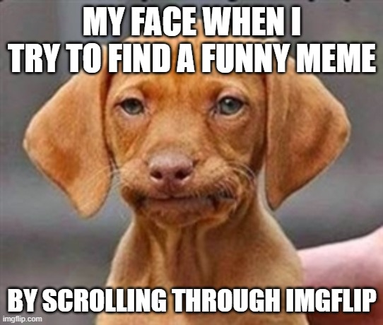 Frustrated dog |  MY FACE WHEN I TRY TO FIND A FUNNY MEME; BY SCROLLING THROUGH IMGFLIP | image tagged in frustrated dog | made w/ Imgflip meme maker