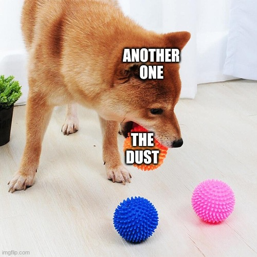 another one bites the dust |  ANOTHER ONE; THE DUST | image tagged in dog | made w/ Imgflip meme maker