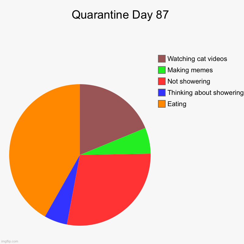 Quarantine Day 87 | Eating, Thinking about showering, Not showering , Making memes, Watching cat videos | image tagged in charts,pie charts | made w/ Imgflip chart maker