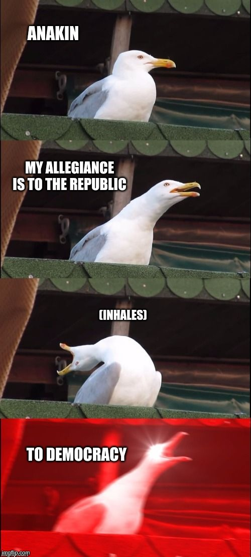 Segull Scream |  ANAKIN; MY ALLEGIANCE IS TO THE REPUBLIC; (INHALES); TO DEMOCRACY | image tagged in segull scream | made w/ Imgflip meme maker