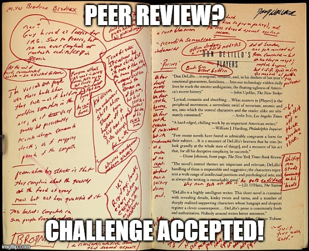 PEER REVIEW |  PEER REVIEW? CHALLENGE ACCEPTED! | image tagged in funny,school,college,review | made w/ Imgflip meme maker