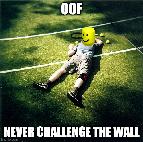 You got oofed by the wall |  OOF; NEVER CHALLENGE THE WALL | image tagged in memes,tennis defeat | made w/ Imgflip meme maker
