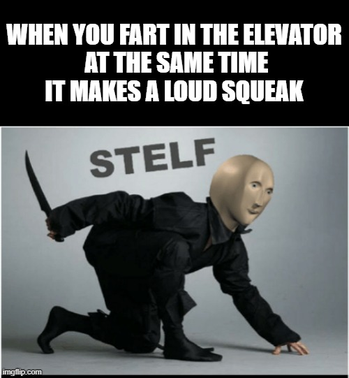 Evbody smeltit but nobdy deltit |  WHEN YOU FART IN THE ELEVATOR  AT THE SAME TIME IT MAKES A LOUD SQUEAK | image tagged in stelf,meme man,memes,fart,elevator | made w/ Imgflip meme maker