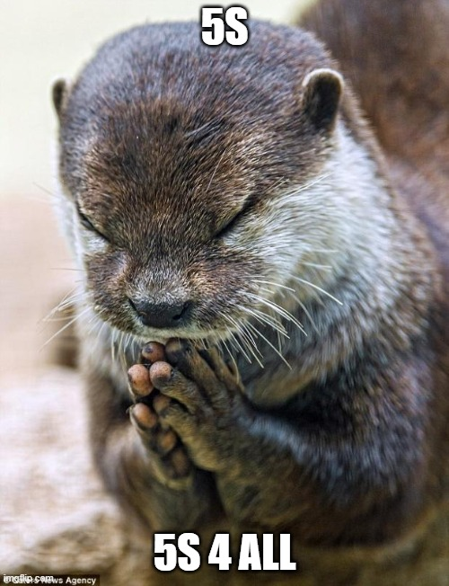 Thank you Lord Otter |  5S; 5S 4 ALL | image tagged in thank you lord otter | made w/ Imgflip meme maker