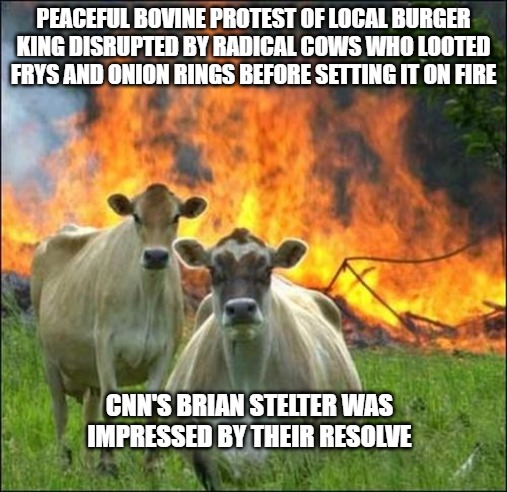Evil Cows |  PEACEFUL BOVINE PROTEST OF LOCAL BURGER KING DISRUPTED BY RADICAL COWS WHO LOOTED FRYS AND ONION RINGS BEFORE SETTING IT ON FIRE; CNN'S BRIAN STELTER WAS IMPRESSED BY THEIR RESOLVE | image tagged in memes,evil cows | made w/ Imgflip meme maker