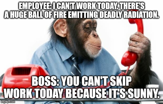 Call into work |  EMPLOYEE: I CAN'T WORK TODAY. THERE'S A HUGE BALL OF FIRE EMITTING DEADLY RADIATION. BOSS: YOU CAN'T SKIP WORK TODAY BECAUSE IT'S SUNNY. | image tagged in phonemonkey,phone call,boss | made w/ Imgflip meme maker