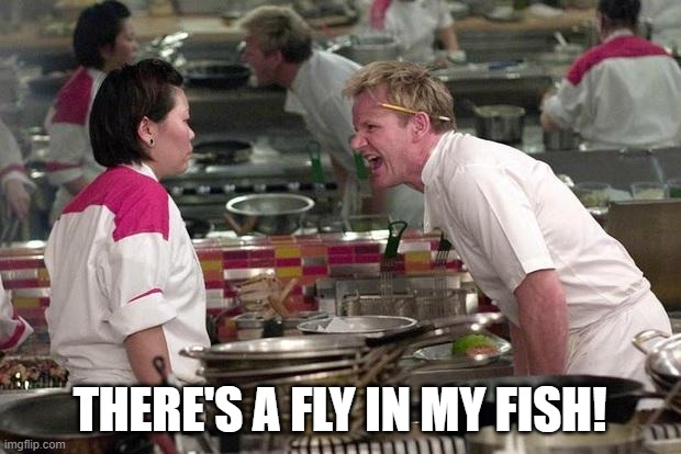 Gordon Ramsey |  THERE'S A FLY IN MY FISH! | image tagged in gordon ramsey | made w/ Imgflip meme maker
