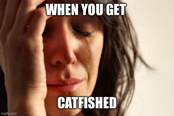 First World Problems Meme |  WHEN YOU GET; CATFISHED | image tagged in memes,first world problems | made w/ Imgflip meme maker