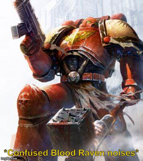 Space Marine | *Confused Blood Raven noises* | image tagged in space marine | made w/ Imgflip meme maker