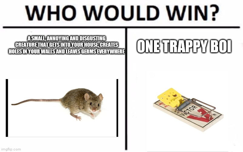 Who Would Win? |  A SMALL, ANNOYING AND DISGUSTING CREATURE THAT GETS INTO YOUR HOUSE, CREATES HOLES IN YOUR WALLS AND LEAVES GERMS EVERYWHERE; ONE TRAPPY BOI | image tagged in memes,who would win,mouse | made w/ Imgflip meme maker