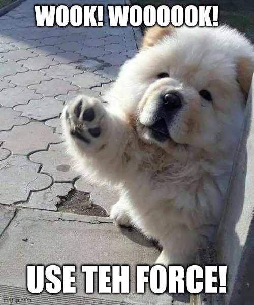 Force Pupper |  WOOK! WOOOOOK! USE TEH FORCE! | image tagged in pupper,star wars | made w/ Imgflip meme maker