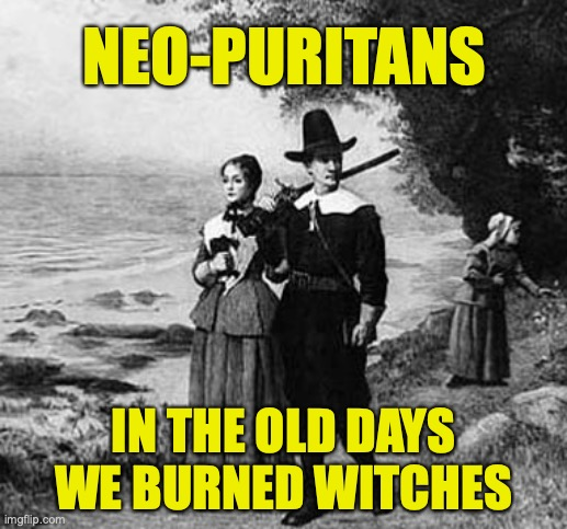 Neo-puritans |  NEO-PURITANS; IN THE OLD DAYS WE BURNED WITCHES | image tagged in free speech,intolerance | made w/ Imgflip meme maker