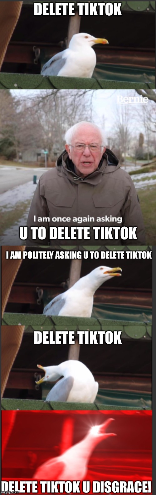 Delete TikTok |  DELETE TIKTOK; U TO DELETE TIKTOK; I AM POLITELY ASKING U TO DELETE TIKTOK; DELETE TIKTOK; DELETE TIKTOK U DISGRACE! | image tagged in memes,bernie i am once again asking for your support | made w/ Imgflip meme maker