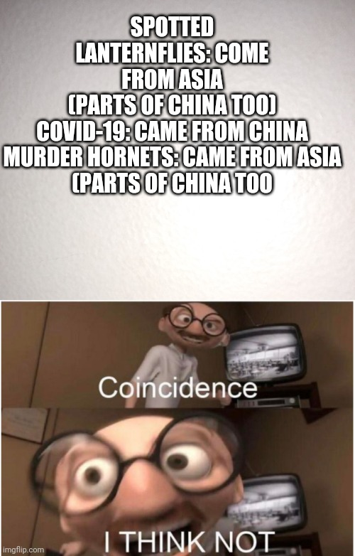 Not to be offensive. It's just a meme. |  SPOTTED LANTERNFLIES: COME FROM ASIA (PARTS OF CHINA TOO)  COVID-19: CAME FROM CHINA  MURDER HORNETS: CAME FROM ASIA (PARTS OF CHINA TOO | image tagged in coincidence i think not,covid-19,coronavirus,funny,murder hornet,china | made w/ Imgflip meme maker