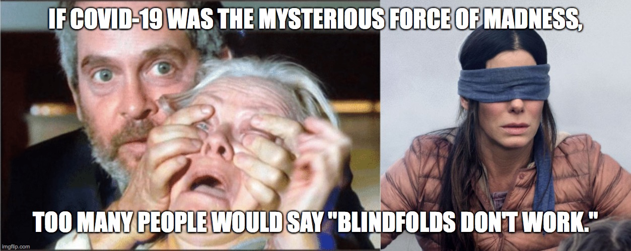 "Covid-Birdbox 1 |  IF COVID-19 WAS THE MYSTERIOUS FORCE OF MADNESS, TOO MANY PEOPLE WOULD SAY ""BLINDFOLDS DON'T WORK."" 
