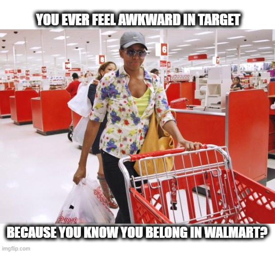 Target vs Walmart shopper |  YOU EVER FEEL AWKWARD IN TARGET; BECAUSE YOU KNOW YOU BELONG IN WALMART? | image tagged in target,walmart,obama,meme,michelle,shopping | made w/ Imgflip meme maker