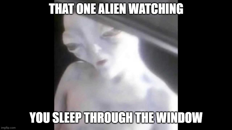 oh my lord |  THAT ONE ALIEN WATCHING; YOU SLEEP THROUGH THE WINDOW | image tagged in ayy lmao alien in car,omg,aliens | made w/ Imgflip meme maker